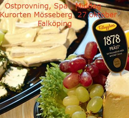 Ostprovning Falköping